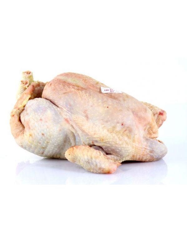 poule prête à cuire