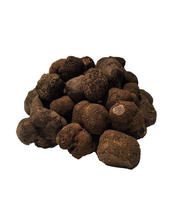 Truffe Noire fraîche de Provence