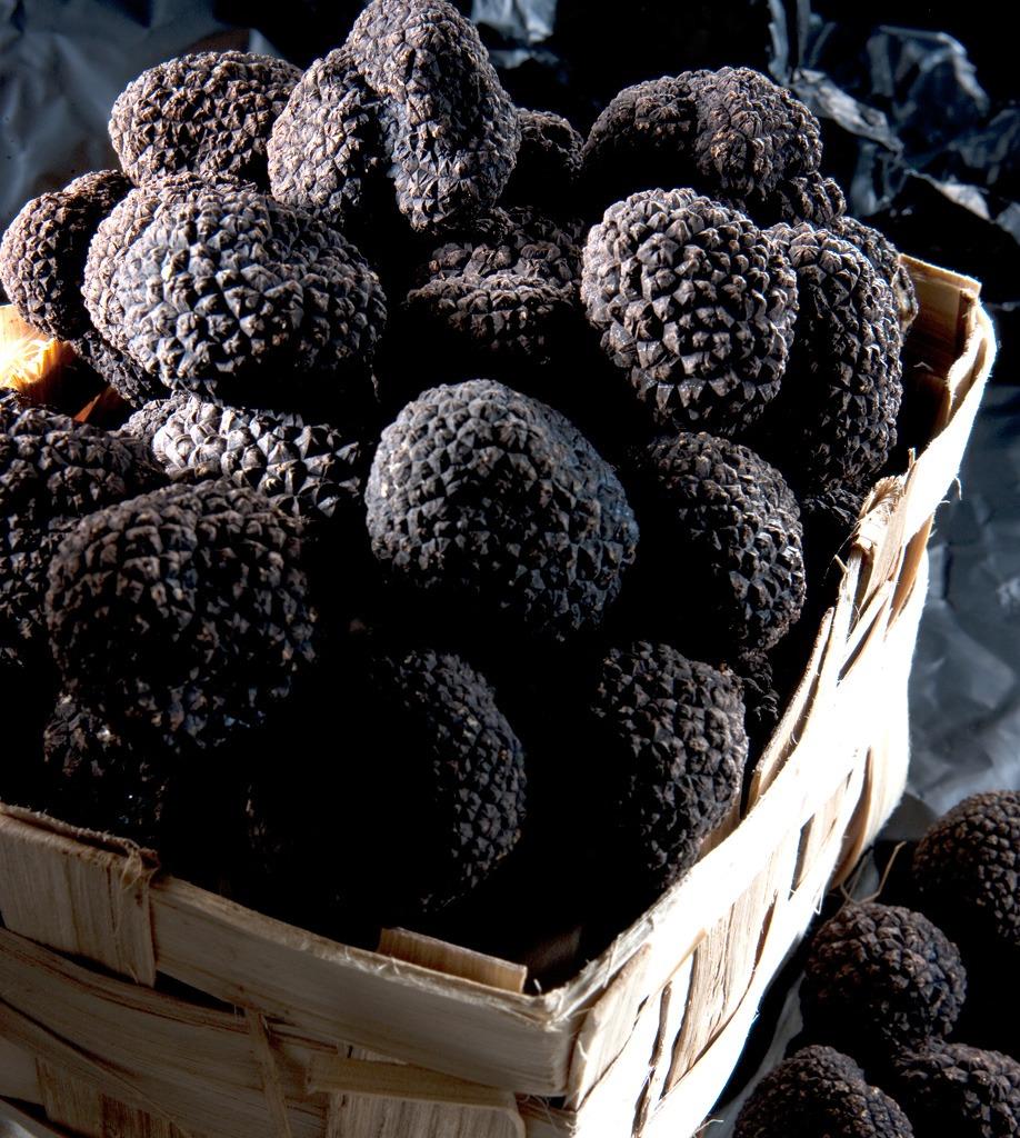 carpaccio-truffes-d-ete