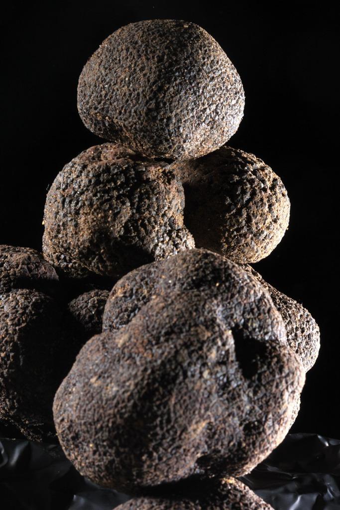 truffes-noires-du-périgord