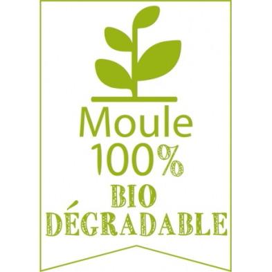 moule-bois-biodégradable